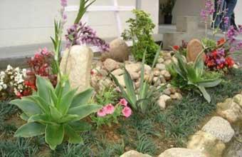Floricultura Grama Santarém