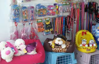 Pet Shop Cão & Cia